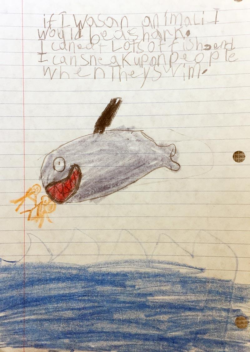 shark writing prompt